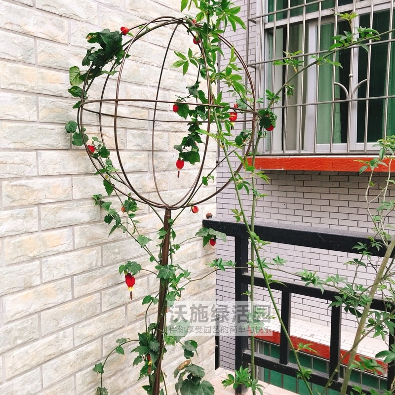 Climb Arbor Iron Art Spherical Flower Rack The Flowers Chinese Rose Windmill Jasmine Clematis Lotus Bracket Blue Snowflake