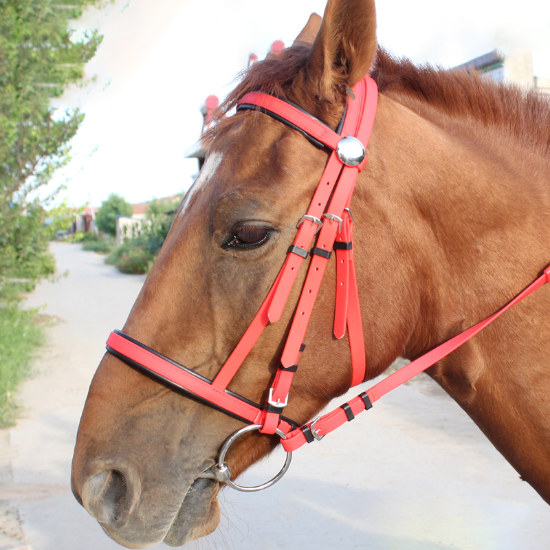 High Quality Horse Head Collar Hanging Horse Riding Reins Horse Riding Equipment Hanging Neck PVC Equestrian Accessories