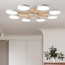 Ceiling Light Fixtures for Living Room LED Modern Bedroom Home Decoration Indoor Lamp Design Art Creative Wood Iron