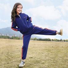 Комплект одежды для девочек кофта на молнии и штаны спортивный