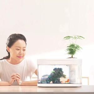Image 4 - Xiaomi geometria aquário aquaponics ecossistema pequeno jardim de água ecológico aquário aquário transparente