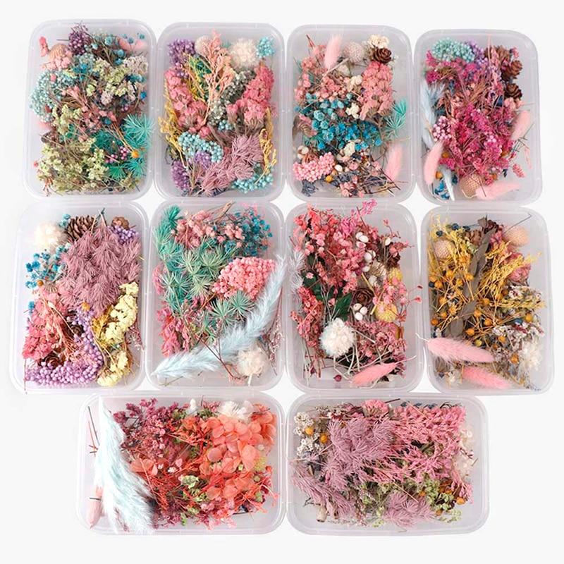 1 коробка случайный смешанный стиль высушенные цветы украшения натуральный цветочный стикер сухая красота дизайн ногтей наклейки эпоксидн...