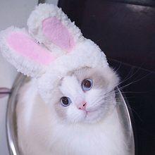 Милая Кепка для собаки шапка кошки костюм зимние теплые забавные