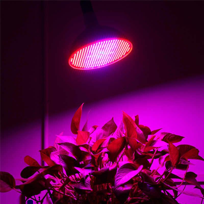 E40 E27 80W LED Wachsen Licht Gesamte Spektrum Hydrokultur Beleuchtung AC85-265V ROT BLAU Leuchtet 800 LEDs Phyto Lampe Für anlage Indoor Veg