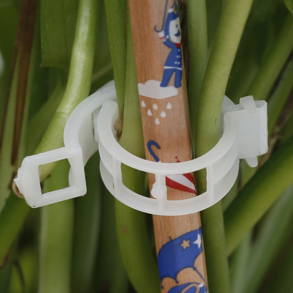 50/100pcs Reusable 3CM Plastic Plant Support Clips Clamps For Plants Hanging Vine Garden Greenhouse Vegetables Tomatoes Clips