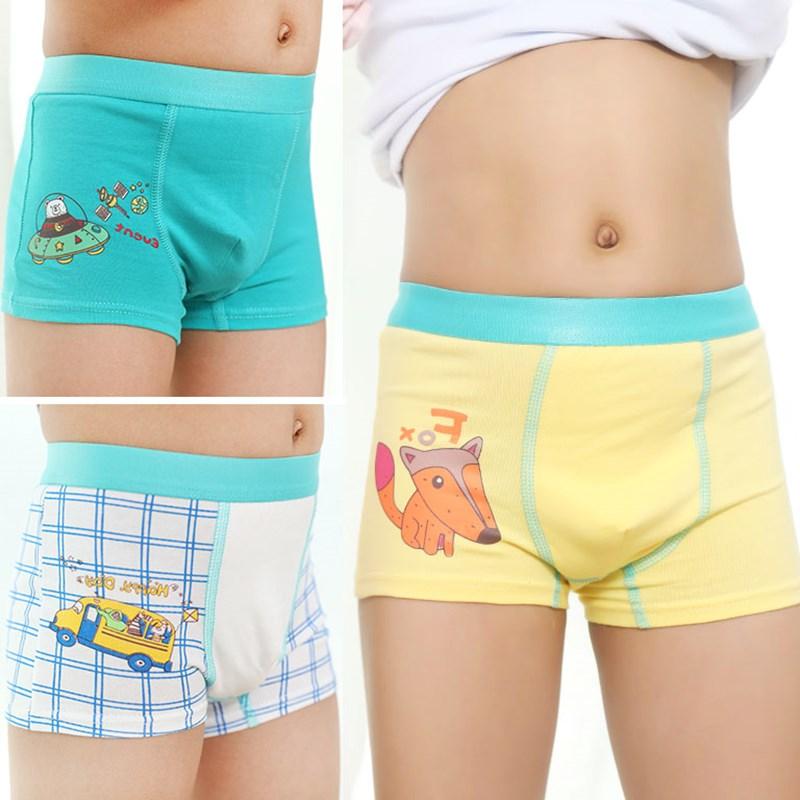 New Arrival Children Boys Underwear Cute Toddler Baby Shorts Panties  Cartoon Fox Print Boxers Plaid Car Underpants for 2 12Y 3PC|Underwear| -  AliExpress