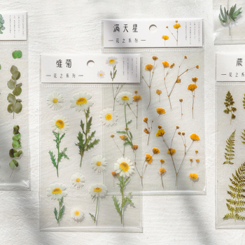 Journamm 12 Designs Natural Daisy Clover Japanese Words Stickers Transparent PET Material Flowers Leaves Plants Deco Stickers