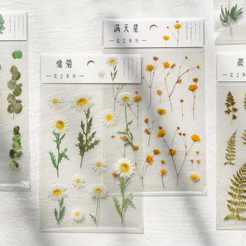 Journamm 12 wzory naturalne stokrotka koniczyna japoński słowa naklejki przezroczyste PET materiał kwiaty liście rośliny naklejki dekoracyjne tanie i dobre opinie CN (pochodzenie) 20200503 3 lata Rectangle Other Transparent PET 105x150mm 1pc pack