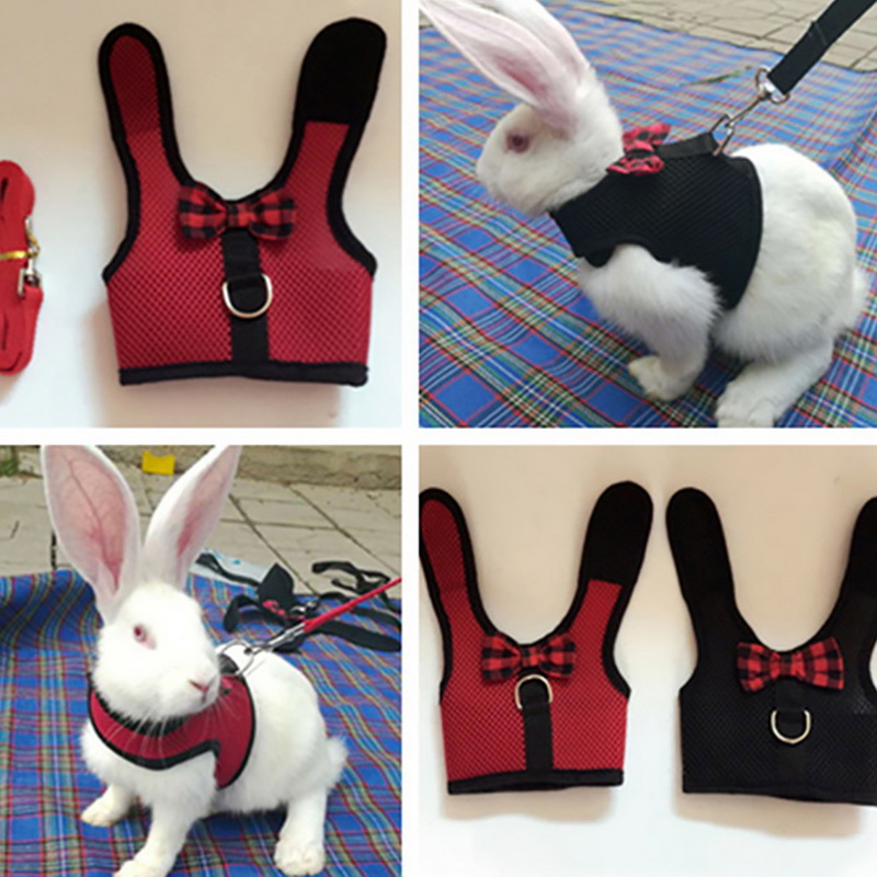 Small Pet Vest  Leashes Suit Pet Cat Puppy Cat Rabbit Hamster  Leashes Set Outdoor Leads Pet Accessories