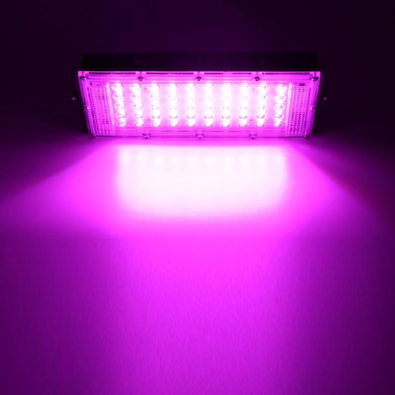 LED Grow Light Phyto Lamp AC 220V 50W LED Full Spectrum Floodlight Indoor Outdoor Greenhouse Plant Hydroponic Plant Spotlight 4