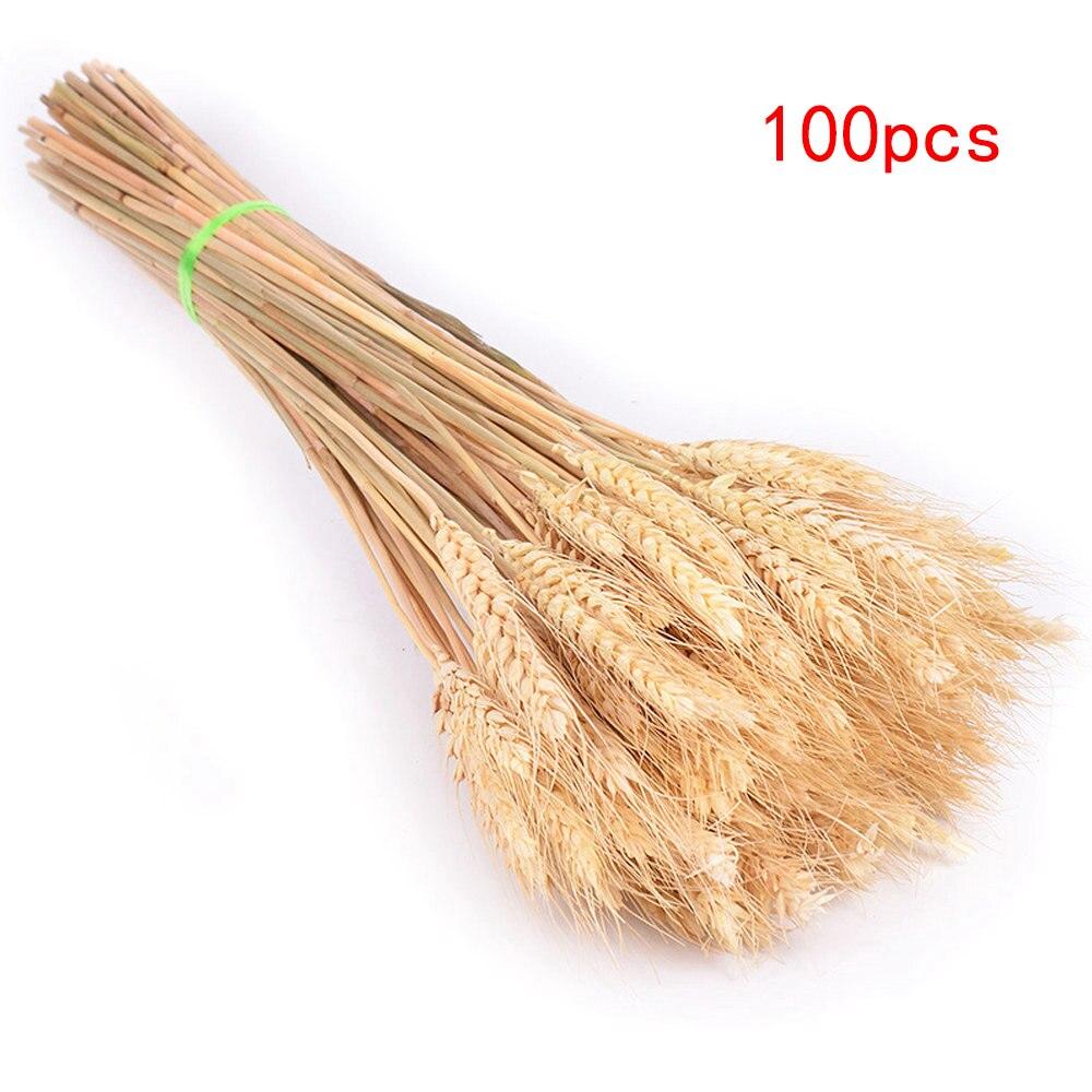 100pcs-Beige-50cm