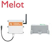 LoRa/4g/Gprs/NB wireless hydrogen gas detector h2 lora wan sensor manufacturer with cloud server