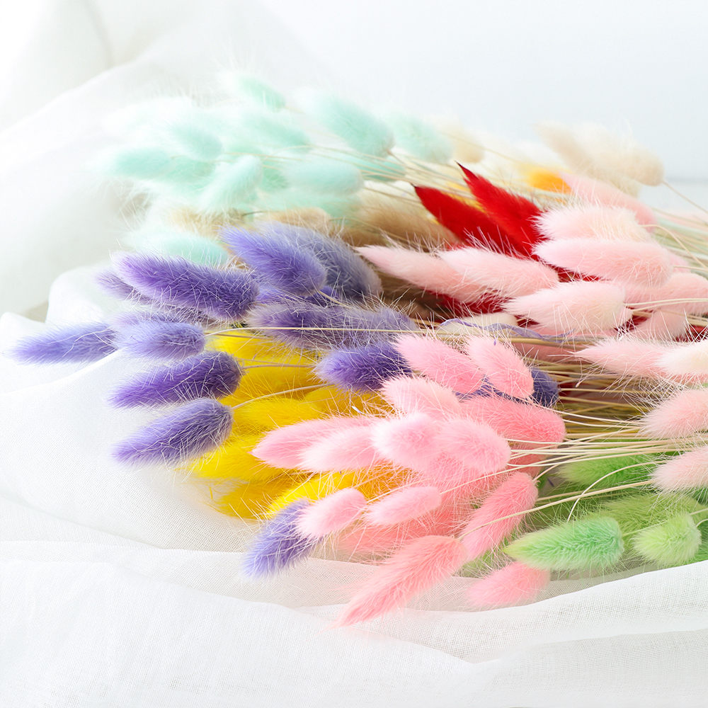 Bouquet Flower Home-Decoration-Accessories Bunny-Tail Natural-Plants Floral Long-Bunches