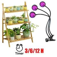 Lampe Für Pflanzen Regale LED Wachsen Licht Phyto Lampe Mit Timer Volle Spektrum Innen Sukkulenten Garten Sämlinge Wachstum Hause Blumen|Pflanzenlichter|   -