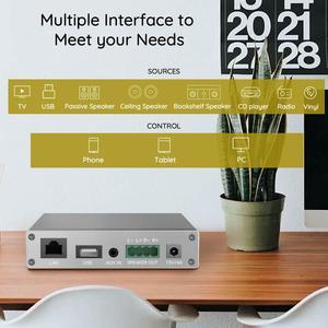 Image 2 - Arylic A30 WiFi et Bluetooth 5.0 Mini amplificateur maison HiFi stéréo classe D multiroom numérique avec Spotify Airplay égaliseur