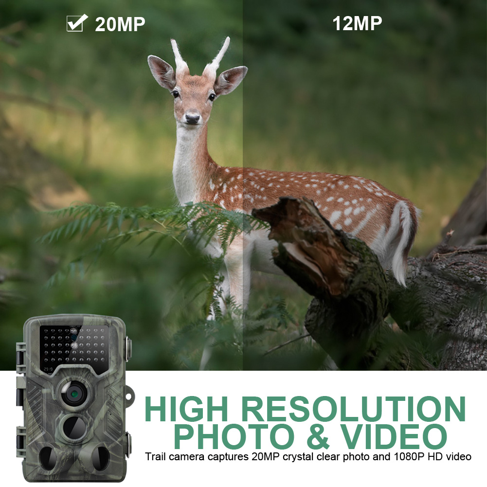 HC800A Infrared Night Vision Wildlife Scouting Cam