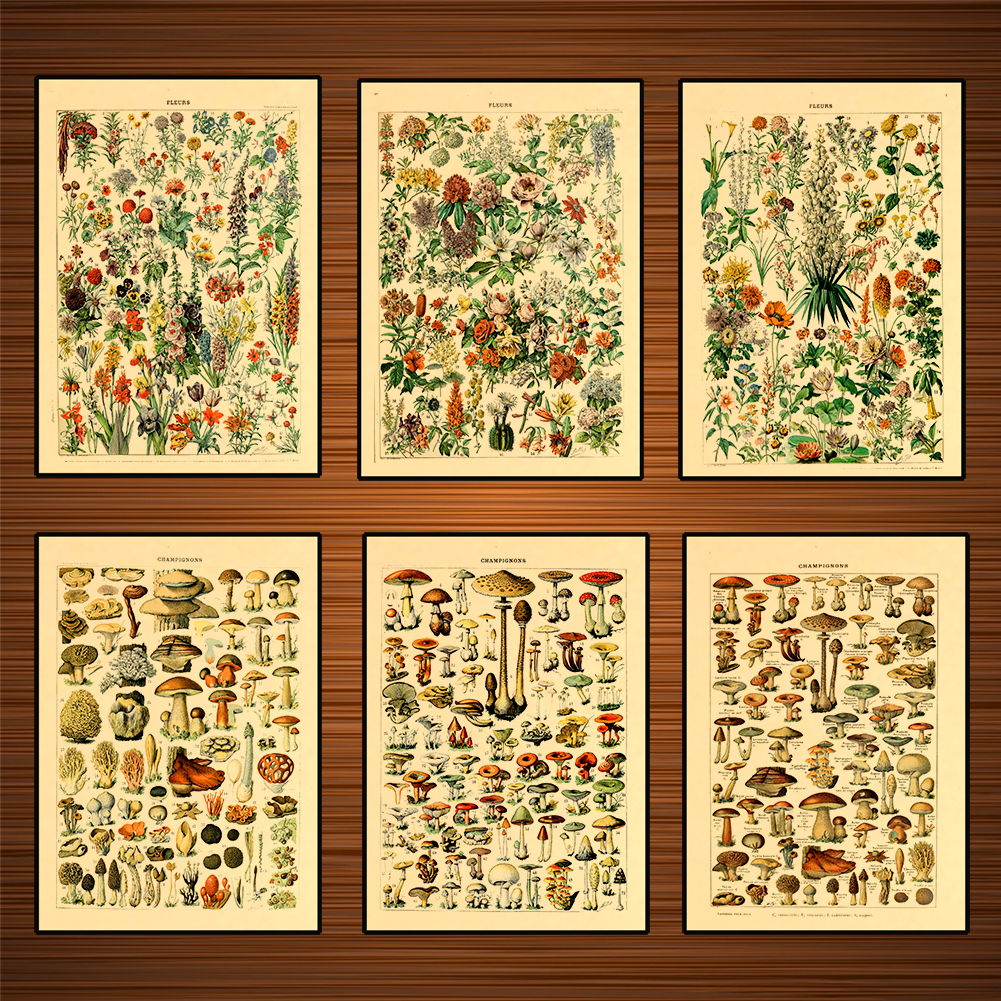 Vintage Adolphe Millot Encyclopedia Posters Mushrooms Herbs Flowers Classic Canvas Paintings Wall Stickers Nursery Decor