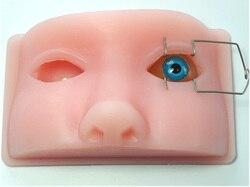 Nuevo Modelo de práctica oftalmológica de microestimulación facoemulsificación modelo oftálmico