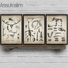 Quadros de parede de dinossauro, arte de decoração para quarto, quadros de parede, estampa de animais fossil vintage