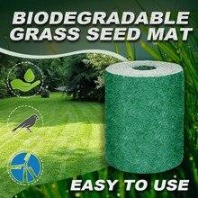20�300см семян ковыль удобрение сад пикник озеленение газон посадка коврик 2020 горячие продажи падения #Р25