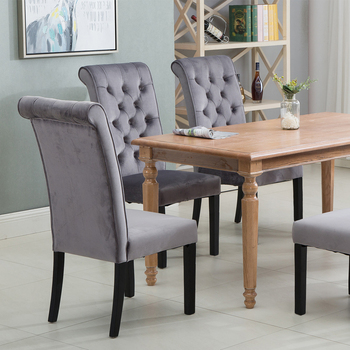 Modern Dining Chairs  1