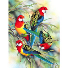 DIY Diamond Painting Flower bird Picture Full Square/round Drill Diamond Embroidery Mosaic Cross Stitch Home Decor Gift M697(China)