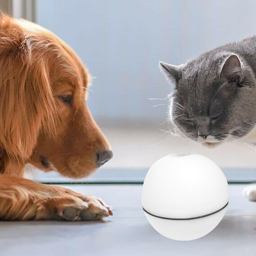 Gato eletrônico cão led luz laser vermelho bola de rolamento perfeito brinquedo manter seu gato de estimação ocupado interativo luz laser bola brinquedos