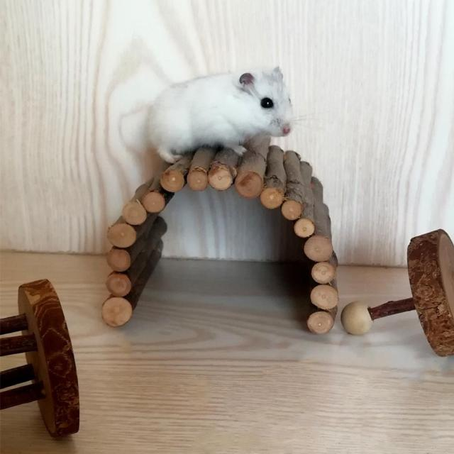 Apple Wooden Arch Bridge Hamster Dodging Tunnel Hamster Molar Toy Pet Rabbit Guinea Pig Supplies 5