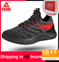 PEAK TAICHI Shoes For Men Adaptive Running Shoes Absorbing Shock Technology Lightweight Gym Fitness Sneakers TAICHI sneakers