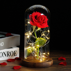 Beauty And The Beast Rose Rose In LED Glass Dome Forever Rose Red Rose Valentine's Day Mother's Day Special Romantic Gift