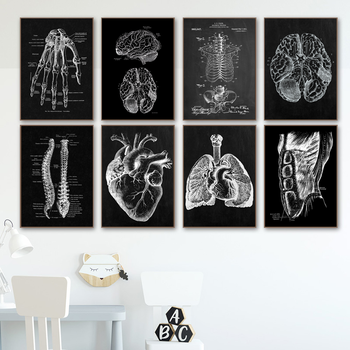 Nordic Posters Muscle Bone Heart Anatomy Skeleton Wall Art Canvas Painting Prints Wall Pictures For Doctor Office Decor image