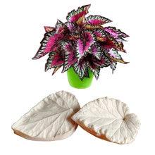 Бегония лист veiner силиконовые формы торт Шоколадный помадка