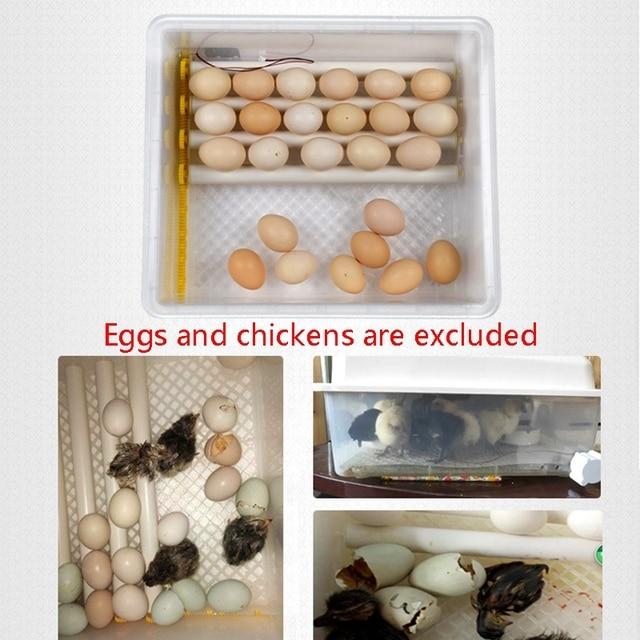 Hatchery Incubator Brooder Machine Egg Hatchers Chicken Automatic Eggs Incubator With Turner Bird Quail Brooder 6