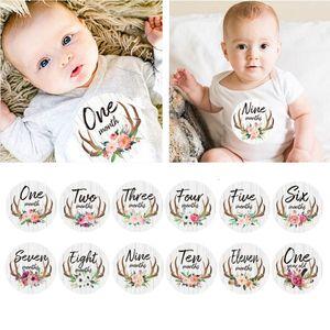 First Year Monthly Milestone Photo Sharing Baby Belly Stickers, 1-12 Months, Neutral