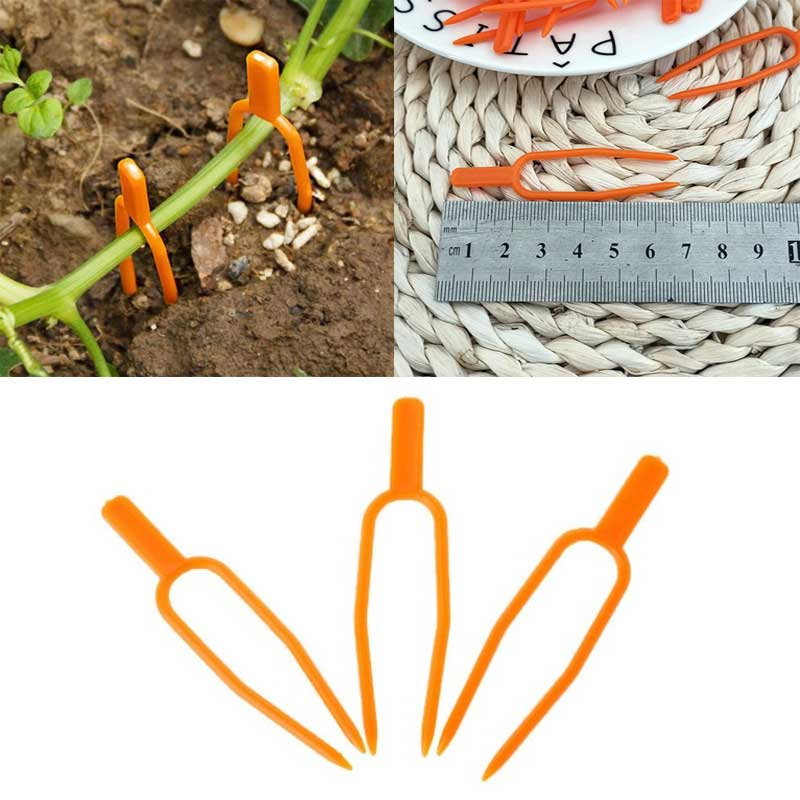 Durable Seedling Fork Plant Climbing Support Clips Multifunction 50Pcs Plants Support Plant Vine Holder Garden Tools Plastic