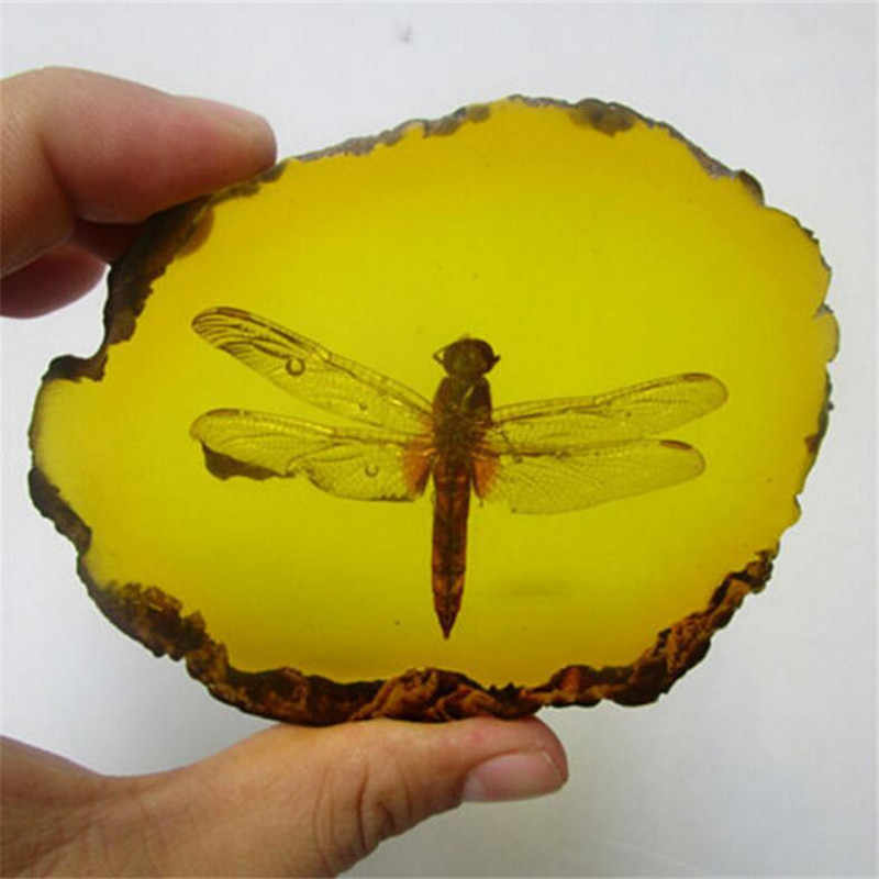 Patung Koleksi Cina Yang Indah Amber Dragonfly Fosil Serangga Manual Polishing Hadiah Yang Indah