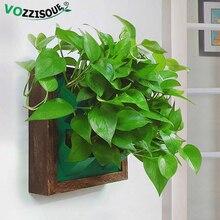 Creative Decorative Hanging Pots Hydroponic Wooden Flower Box Photo Frame Flower Pot Holder Vertical Garden Wall Plastic Planter