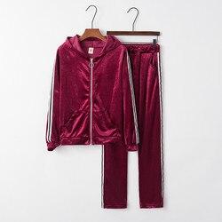 Sudadera y pantalones con cremallera para Mujer, conjunto De dos piezas, chándal De manga larga a rayas De terciopelo con capucha, blusa De tela, pantalón, conjunto De Mujer