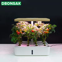 Intelligent Hydroponic Planter Soilless Cultivation Equipment Nursery Flower Planting Box Automatic Water Absorbing Flower Pot