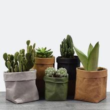 Mini Succulents Flower Pots…