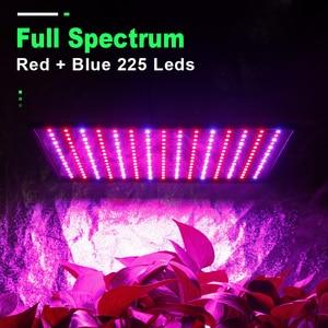 Image 2 - Lampe horticole de croissance intérieure, 1000W, LED W, spectre complet, éclairage pour tente/chambre de culture intérieure, Phyto/IR, rouge/bleu, 225, Led fleurs, 2 pièces
