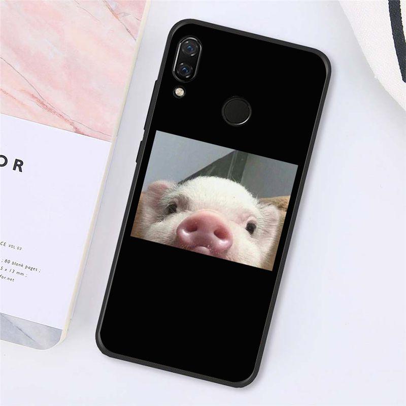 Cute Little Pink Pet Pig