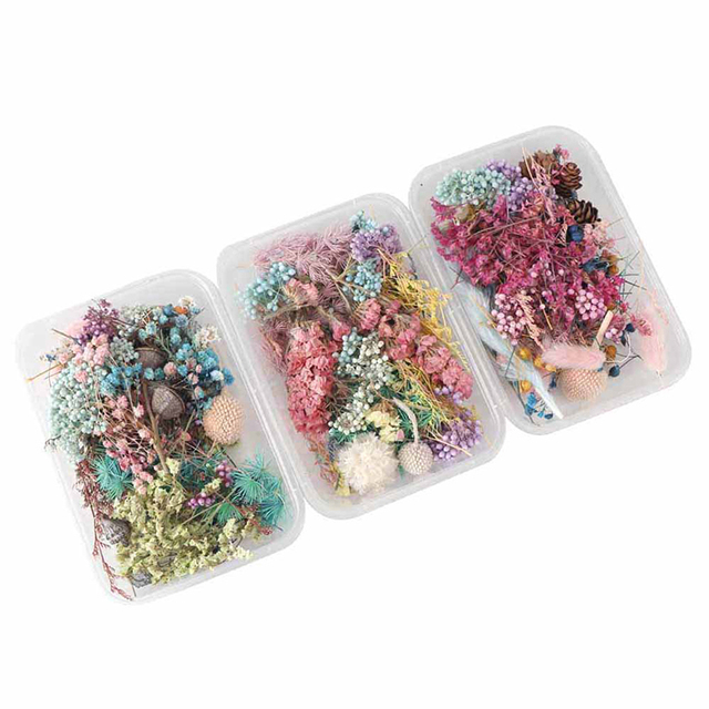 1 Box Random Mix Style Dried Flowers Decoration Natural Floral Sticker Dry Beauty Nail Art Decals Epoxy Mold DIY Filling Jewelry 5