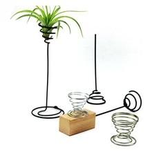 Decorative Container-Holder Pot-Stand Balcony-Decor Garden-Supplies Tillandsia Airplants