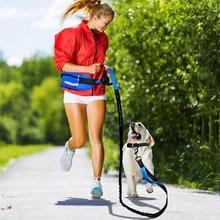 NEW Large Capacity Pet Dog Training Outdoor Supplies Portable Waist Bag Safety Reflective Elastic Dog Leash Set