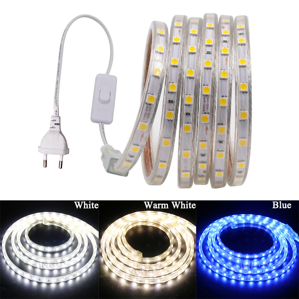 220V 110V AC 5050 SMD Flexible LED Strip 60LEDs/m Waterproof Tape Lights With Switch Plug Home Decoration 1m 2m 10m 20m 50m 100m