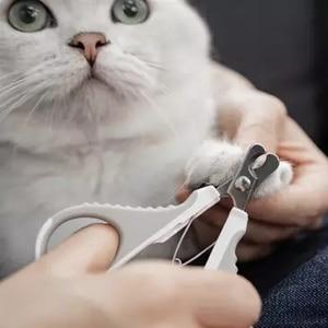 Image 5 - Xiaomi Huisdier Schuine Nagelknipper Rvs Met Slot Grooming Schuine Katten Nagelschaartje Nagelknipper Dierbenodigdheden