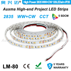 High Power 2835 WWCW 120 LEDs/m LED Streifen, 19,2 W/m, Farbe temperatur einstellbar, CCT, DC12/24 V, 600 LEDs/Reel, 5 meter/Reel, für innen