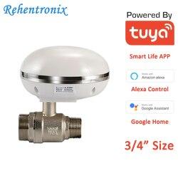 Tuya Smart Gas Wasser Ventil IP66 Wasserdichte 3/4 Größe Smart WiFi Ventil Fernbedienung und Linakge Alarm Alexa Google Stimme control