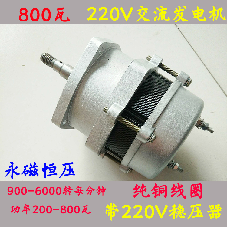 Постоянный магнит постоянного напряжения 220V800W рукоятка генератор с регулятором скорости увеличение коробки